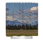 Soaring Skagit Snow Geese Shower Curtain