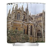 Soaring Spires Shower Curtain