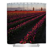 Soaring Spring Colors In Skagit Shower Curtain