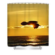 Soaring With Confidence Shower Curtain
