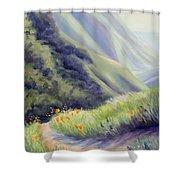 Soberanes Canyon  Shower Curtain