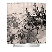 Soft And Stalwart Shower Curtain