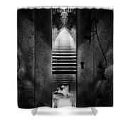 Soft Asylum Shower Curtain