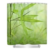 Soft Bamboo Shower Curtain by Priska Wettstein