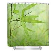 Soft Bamboo Shower Curtain