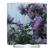 Soft Blues And Pink - Spring Blossoms Shower Curtain