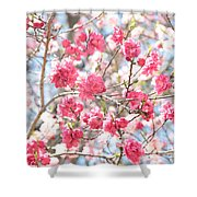Soft Colors Of Spring Shower Curtain