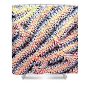 Soft Corals 10 Shower Curtain