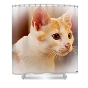 Soft Expression Shower Curtain