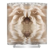 Soft Fantasy Shower Curtain