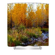 Soft Forest Colors Shower Curtain
