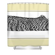 Soft Kitty Warm Kitty Shower Curtain