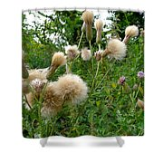 Soft Nature Shower Curtain