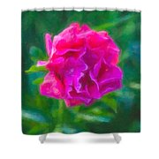 Soft Pink Peony Shower Curtain