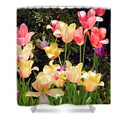 Soft Spring Colors Shower Curtain