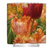 Soft Tulips Shower Curtain