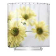 Soft Yellow Poms Shower Curtain