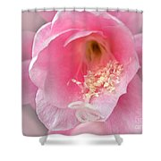 Soft..pink..delicate 2 Shower Curtain