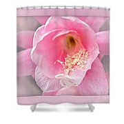 Soft..pink..delicate Shower Curtain