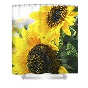 Solar Sunflowers Shower Curtain