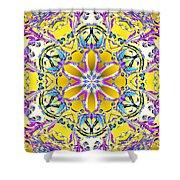 Solar Sunstar Shower Curtain by Derek Gedney