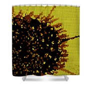 Sole Explosion  Shower Curtain