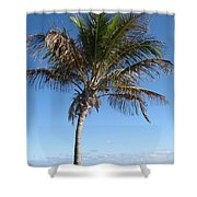 Sole Palm Shower Curtain
