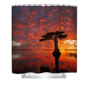 Sole Palm Tree At Sunset Shower Curtain