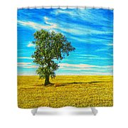 Solitario Shower Curtain