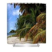Nude Beach Shower Curtain