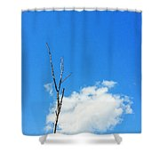 Solitude - Blue Sky Art By Sharon Cummings Shower Curtain