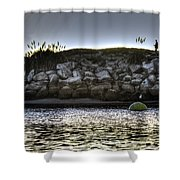 Solo At The Harbor At Dusk 2 Shower Curtain