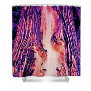Solo Fire Shower Curtain