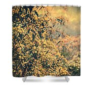 Solo Lei Shower Curtain