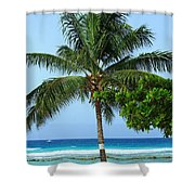 Solo Palm Shower Curtain