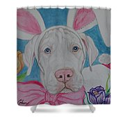Some Bunny Says Spring Has Sprung Shower Curtain