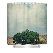 Some Days I Believe Shower Curtain