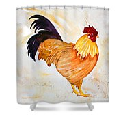 Some Days You Have To Paint A Rooster Shower Curtain