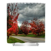 Some Fall Colors Shower Curtain