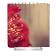 Some Light Into Your Darkness Shower Curtain by Laurie Search