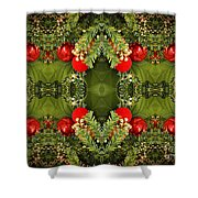 Some Of The Colors Of Christmas Altered Version  Shower Curtain
