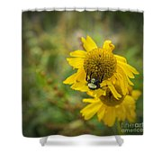 Something Wild Shower Curtain
