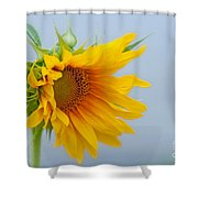 Sometimes We Feel Like This ... Shower Curtain