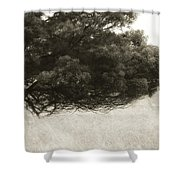 Somewhere To Dream Shower Curtain