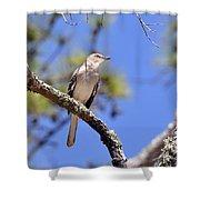 Song Bird Shower Curtain