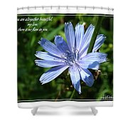 Song Of Solomon 4 Verse 7 Shower Curtain