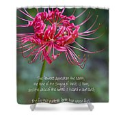 Song Of Solomon - The Flowers Appear Shower Curtain
