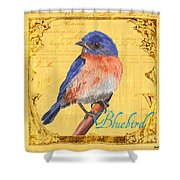 Colorful Songbirds 1 Shower Curtain