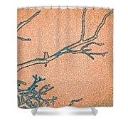 Songbird Peach Shower Curtain