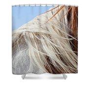 Sonny's Mane Shower Curtain